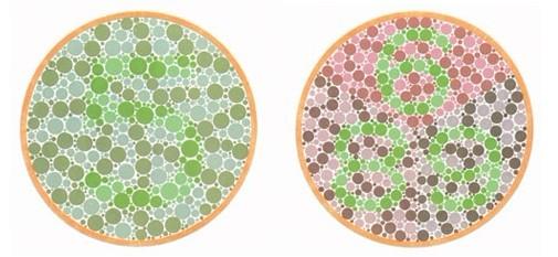 色盲色弱测试图